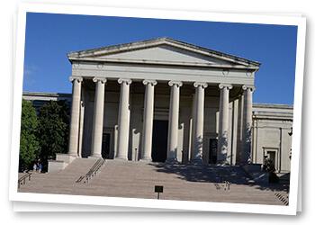 Seeking the Beauty of Comfort in Arlington, Virginia